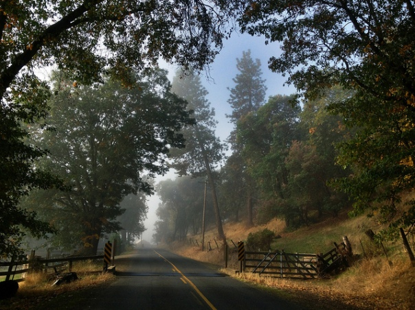 Driving To The Oregon Vortex